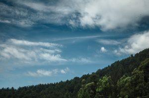 Foto på en skog i sluttning med en blå himmel och vita moln. I högra hörnet flyger tre fåglar